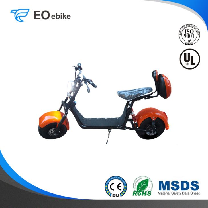 60V 1000W Big Wheel Adult Puhalei X5 Electric Harley Motorbike with CE