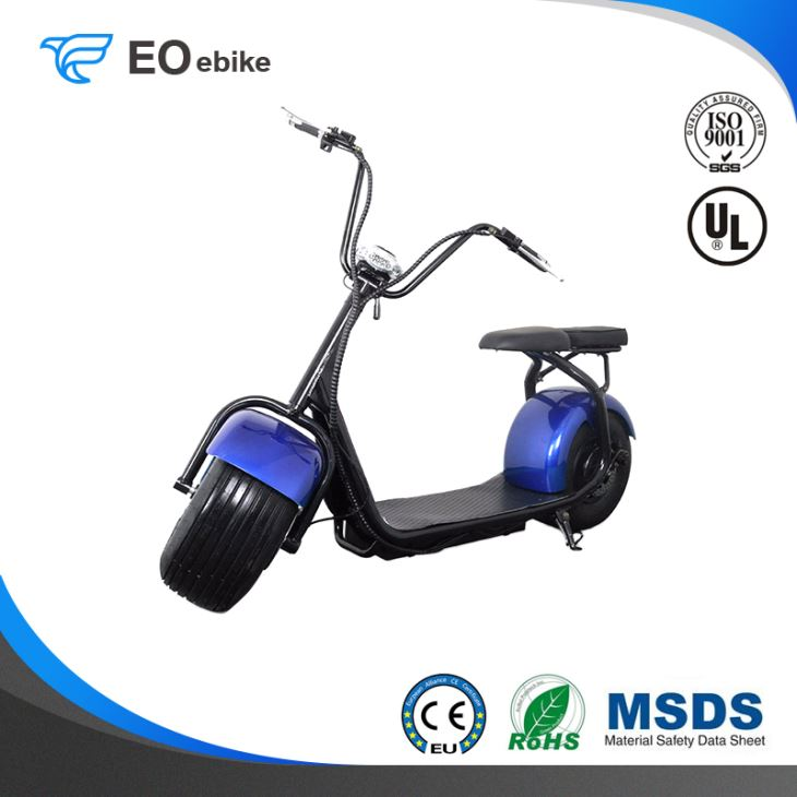 60V/12Ah Lithium Battery 1000W Classic Electric Harley Motorbike with FCC