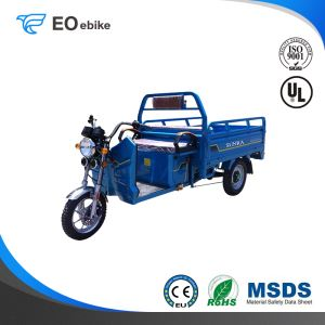 1500W DC Brushless Motor 60-72V ET01 Electric Cargo Tricycle for Sale