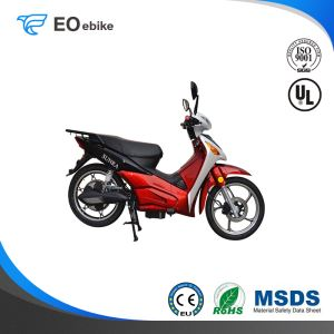 2000W Brushless Motor Fr 2.50-17'' Rr 2.75-17'' EM75 Luxury Electric Motorbike