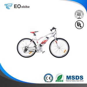 250W DC Brushless Motor V Brake Shimano SIS 7 Speed EB41B Electric City Bike