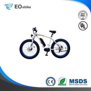 36V 250W Disc Brake Shimano 8 Speed Lithium Battery EB61 Electric Mountain Bike