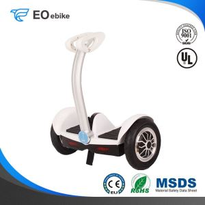 36V/4.4Ah Lithium Battery 350W Blood Youth Electric Smart Scooter