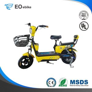 48V Lead Acid Battery Environmental Protection Steed Electric Pedal Scooter