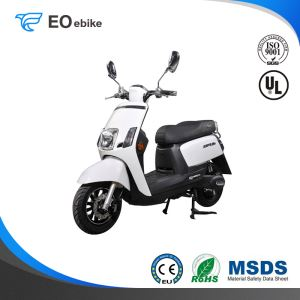 60V/20Ah Gel Battery 800W Bosch Motor ZS Simple Electric Motorbike