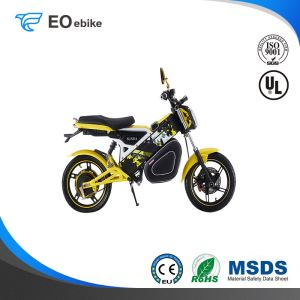 60V/20Ah Gel Battery 800W DL Luxury Electric Motorbike with CE