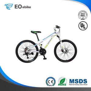 New Arrival Aluminum Alloy Rims Colorful Ruitu 168 Mountain Bike