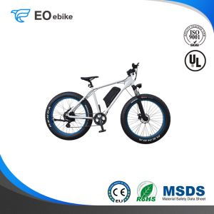 Rear Wheel Drive Motor 26x4.0 Fat Tire LCD Display EB61A Electric Mountain Bike